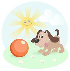 Free Happy Dog On Shiny Lawn Stock Photo - 22729770