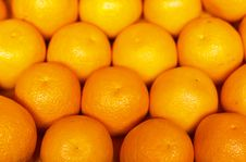 Free Big Oranges Stock Photos - 22756773