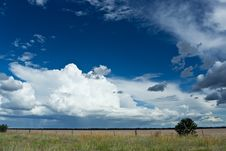 Free Blue Sky Over A Green Field Royalty Free Stock Images - 22759699