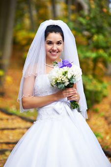 Free Beautiful Bride Royalty Free Stock Image - 22759976