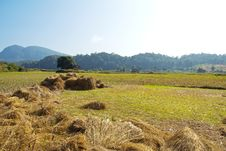 Free Field And A Pile Of Straw In The Countryside Stock Image - 22760981
