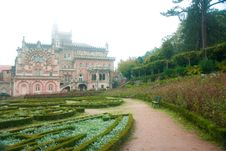Free Buçaco Palace Garden Royalty Free Stock Image - 22762816