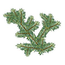 Christmas Concept Branch Fir Tree Mesh Royalty Free Stock Images