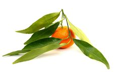 Free Juicy Mandarin With Green Leaves Stock Images - 22772004