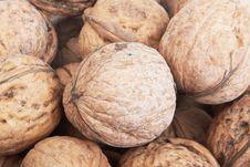 Free Walnuts Stock Photos - 22776513