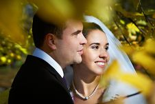 Portrait Bride And Groom In Yellow Autumn Foliage Royalty Free Stock Images
