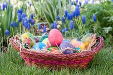 Free Easter Eggs Stock Photo - 22783460