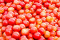 Free A Pile Of Juicy Red Tomatoes Stock Photos - 2282033