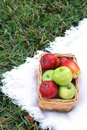 Free Apples In Basket On Grass Royalty Free Stock Images - 2285129
