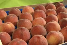 Free Peaches Stock Photography - 2280062