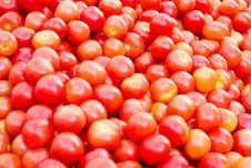A Pile Of Juicy Red Tomatoes Stock Photos
