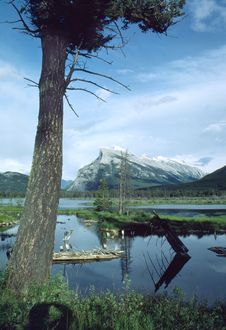 Free Rundle Mountain Banff Alberta Canada Royalty Free Stock Image - 2283026
