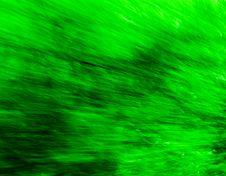 Free Green Rush Stock Photos - 2283223