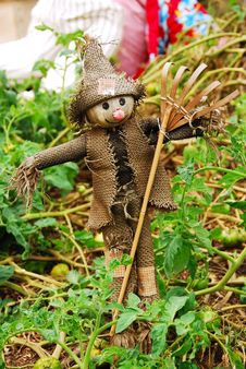 Free Funny Little Scarecrow Stock Photography - 2283662