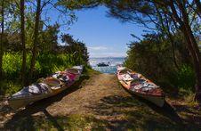 Free Abel Tasman Royalty Free Stock Photography - 2283937