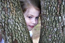 Free Peeking Through The Trees Stock Image - 2287881