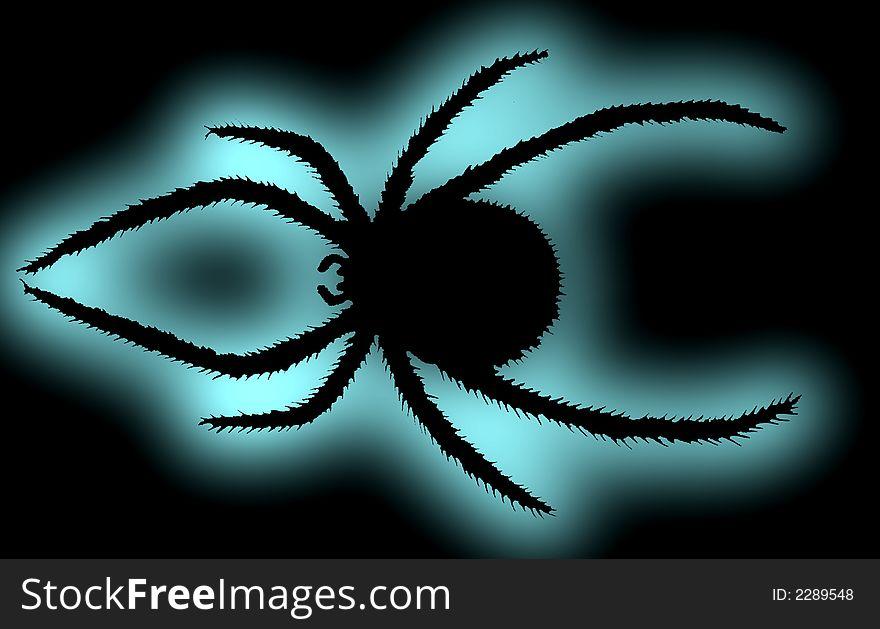 Black spider.