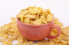 Free Bowl Of Flakes Stock Photo - 22804520