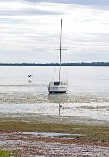 Free Sailboat Stranded In Shallow Water Royalty Free Stock Image - 22805096