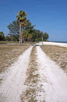 Free Dirt Road Alongside A Beach Royalty Free Stock Photography - 22805217