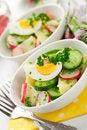 Free Potato Salad Stock Photos - 22816843