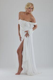Free Beautiful Bride Royalty Free Stock Photo - 22817135