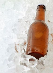 Beer Bottle On Ice Royalty Free Stock Photography