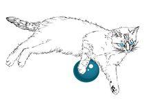 Blue-eyed Cat. Stock Images