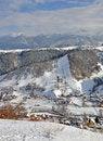 Free Snowy Village Royalty Free Stock Photos - 22835758