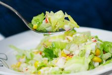 Free Green Salad With Crab Meat Stock Images - 22832644