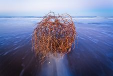 Free Long Exposure To Sea Stock Images - 22851254