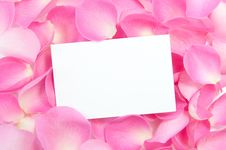 Blank Card With Roses Royalty Free Stock Photo