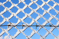 Free Barbed Wire Royalty Free Stock Image - 22863956