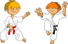 Free Karate Kid Stock Photography - 22864742