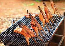 Free Grill Chicken Stock Images - 22870594