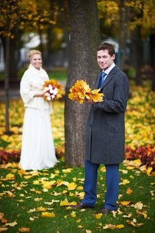 Free Bride And Groom With A Maple Leaf Stock Image - 22871541