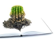 Free Cactus And Notebook. Royalty Free Stock Photo - 22872125