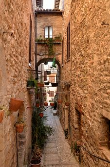 Free Center Of Spello Stock Photography - 22890022