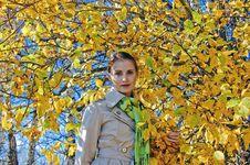 Autumn Portrait 2 Royalty Free Stock Photo