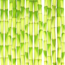 Free Bamboo Background Royalty Free Stock Images - 22896809