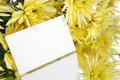 Free Gift Card And Yellow Flowers Royalty Free Stock Image - 2297736