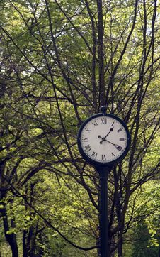 Free Clock In A Park Royalty Free Stock Photos - 2291408