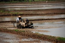 Free Paddy Field, Ploughing Machine Stock Image - 2296191