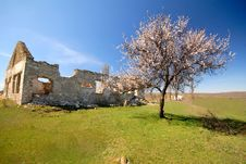 Old Destroyed Rural House Royalty Free Stock Photography
