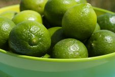 Limes Up Close Stock Photos