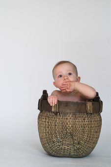 Free Basket Baby Royalty Free Stock Photos - 2299538