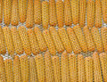 Free Few Yellow Corn Stock Photography - 22907392