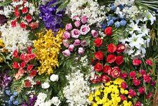 Free Flowers Background Stock Image - 22908121