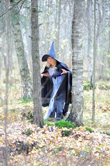 Free Witch In The Forest Stock Photo - 22924510