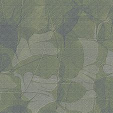 Free Leaves On Stone Stock Photography - 22928842